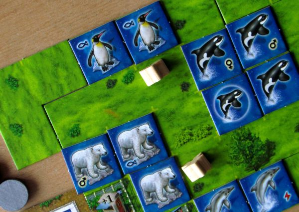 Aquaretto - rozehraná hra