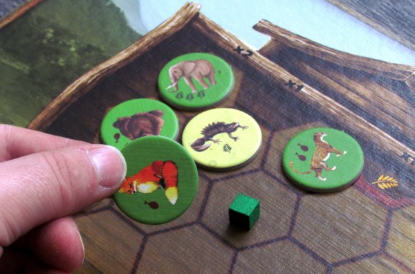 Ark of Animals - rozehraná hra