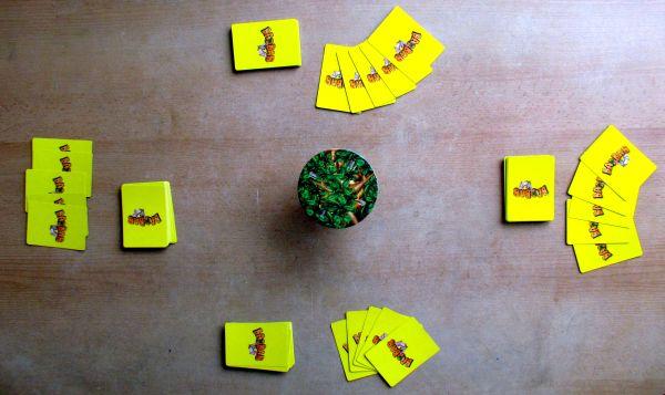 Baobab - připravená hra