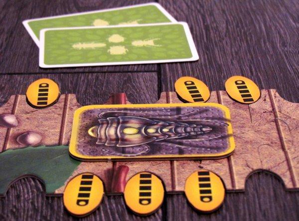 Bug Race - game in progress