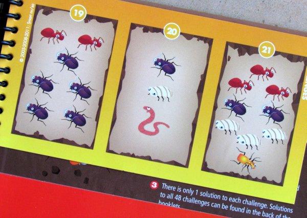 Smart Games: Brouci v akci - zadání
