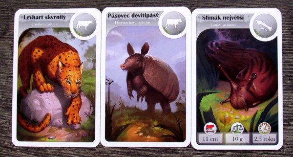 Cardline: Svět zvířat - karty