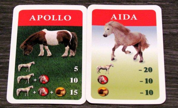 Dostihy a sázky Junior - karty