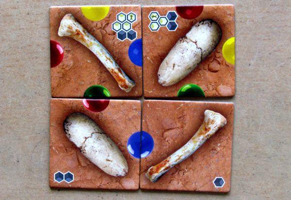 Exposaurus- kartičky