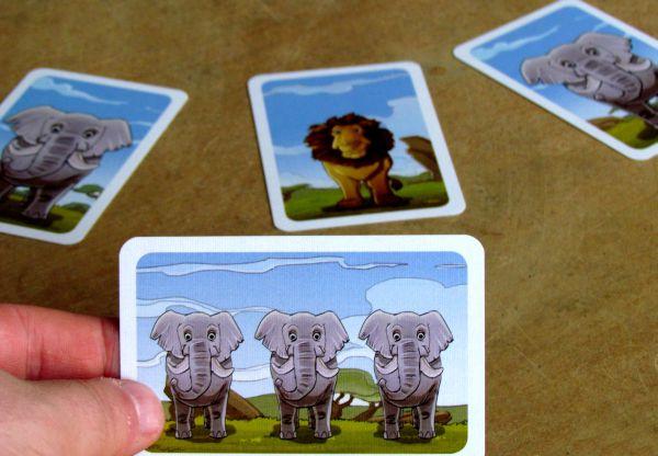 Kleine Fotosafari - připravená hra