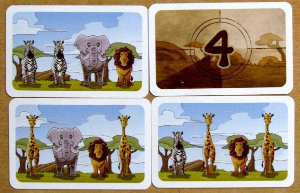 Kleine Fotosafari - karty