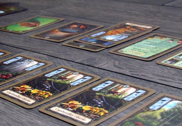 Fungi - rozehraná hra