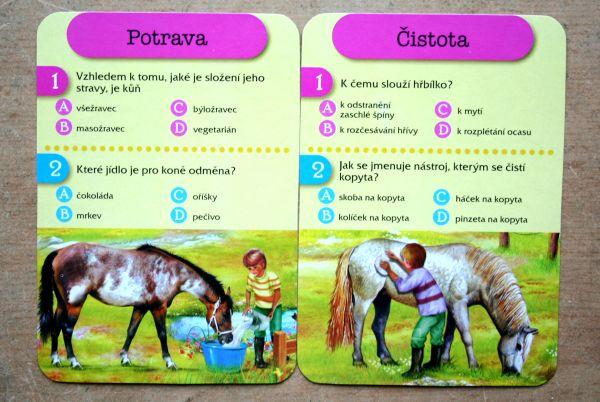 Hravé knihy v plechovce - Koně - karty