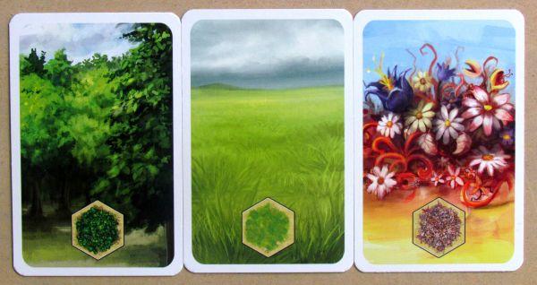 Kingdom Builder - cards