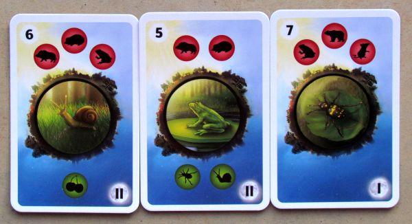 Predátor - karty