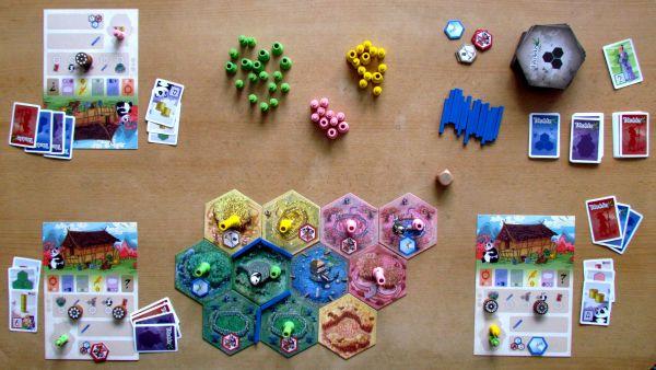 Takenoko - rozehraná hra