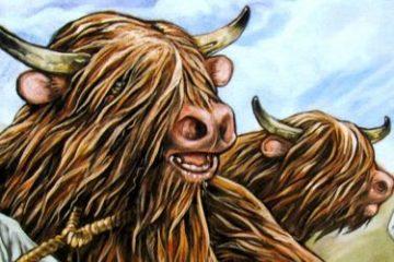 Recenze: Mac Robber - bitva skotských klanů