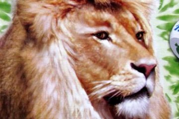 Recenze: Zooloretto Kostková hra - kutálení zvířaty