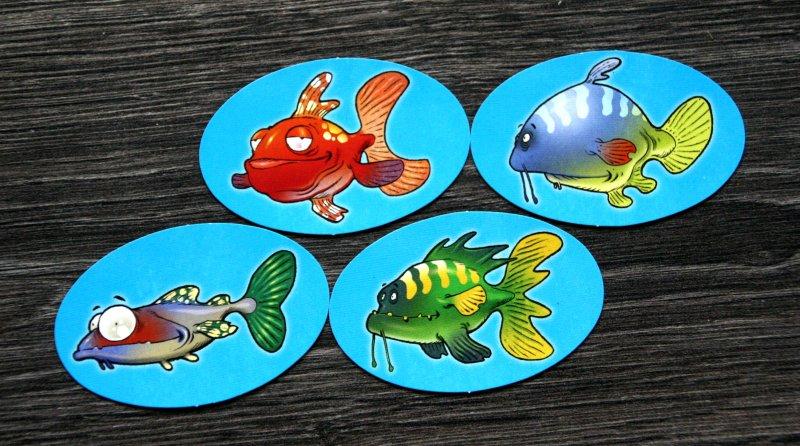 fish-fish-11