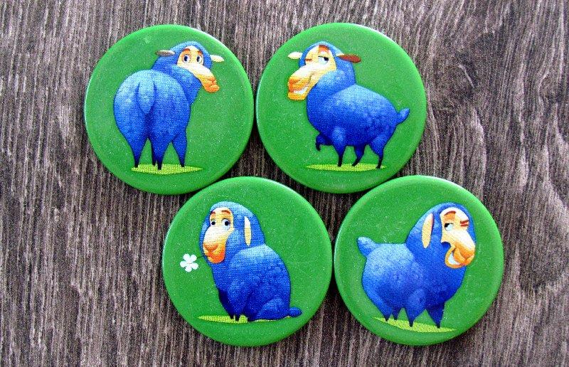 ovce-boj-o-pastviny-17
