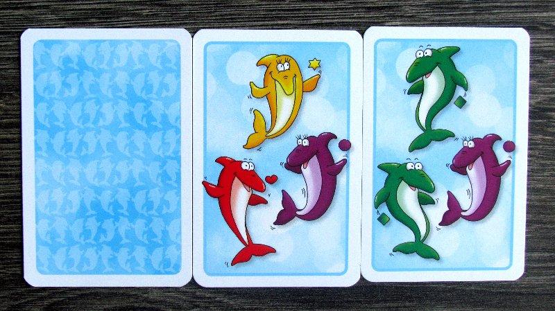 circo-delfino-10