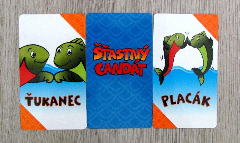 stastny-candat-07