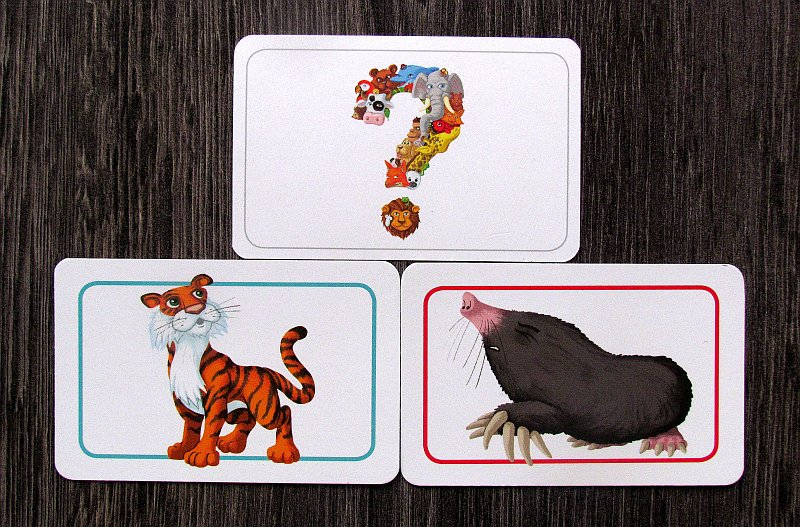 concept-kids-animals-17