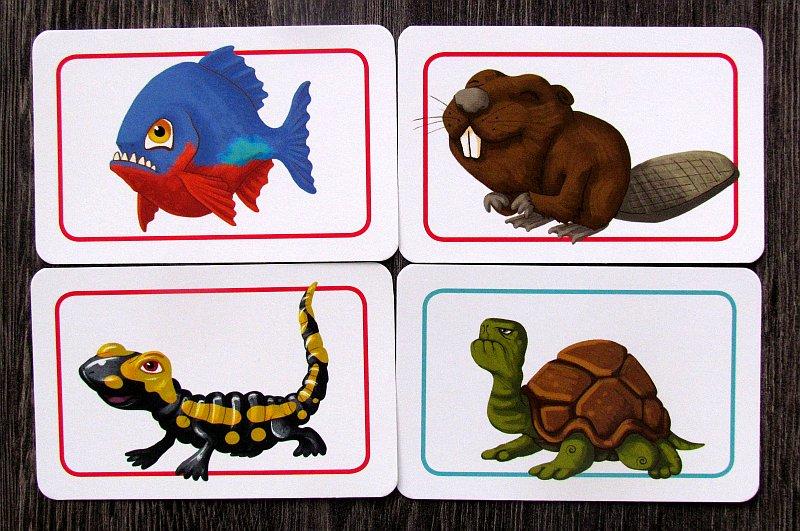 concept-kids-animals-18