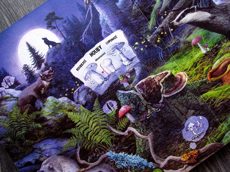 kouzelne-cteni-hrava-prirodoveda-10