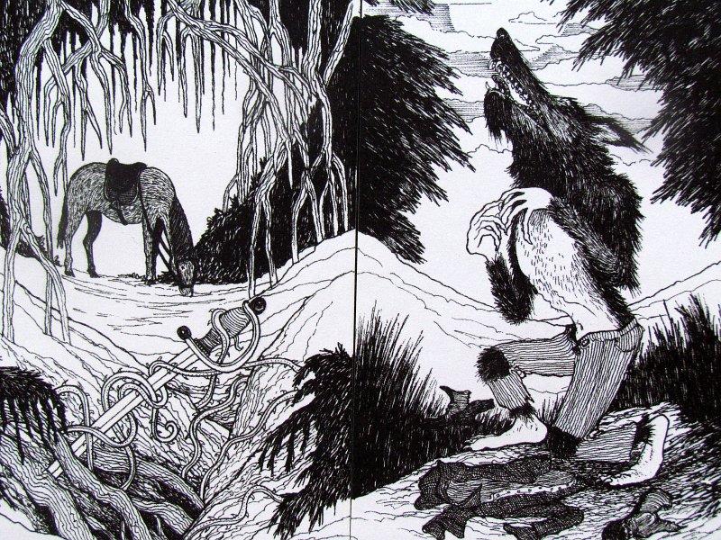 myriorama-hluboke-lesy-06