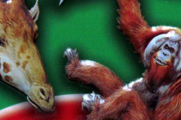 Recenze: HRAvé knihy v plechovce - Dinosauři a Zvířata