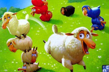 ovce-boj-o-pastviny