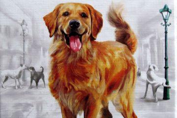 psi-zivot-karetni-hra