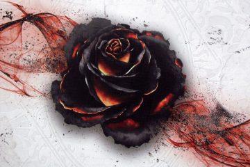 black-rose-wars